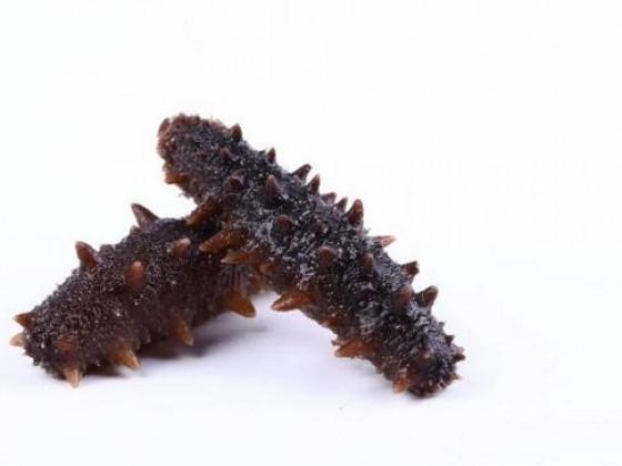儿童吃大连海参的功效怎么吃最好