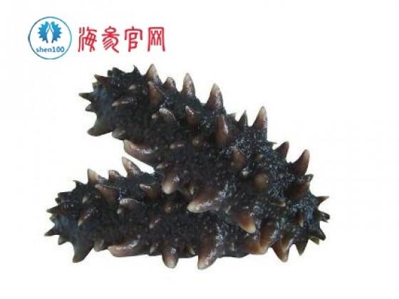 海参泡发的方法
