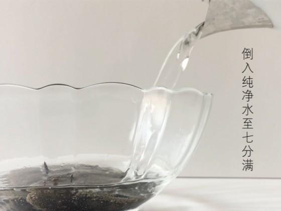 海参的发制标准