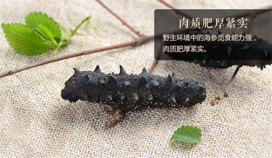 野生海参和养殖海参的区别:七招教你区分