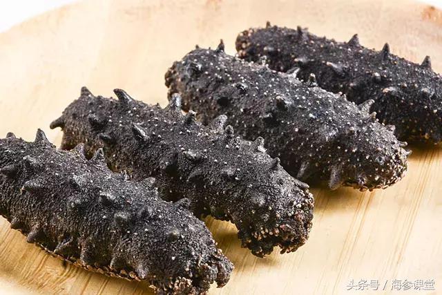 吃干海参好还是吃鲜海参好?