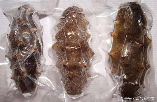 即食海参和干海参哪个好?