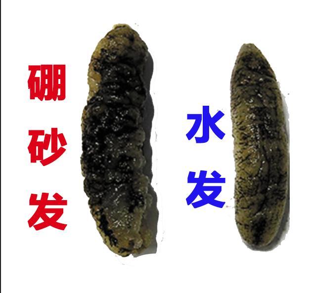为什么说不建议买即食海参,即食海参比不过干海参的原因