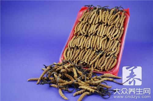 权健虫草海参的功效有哪些?