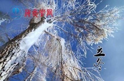 冬至吃海参,吃多长时间