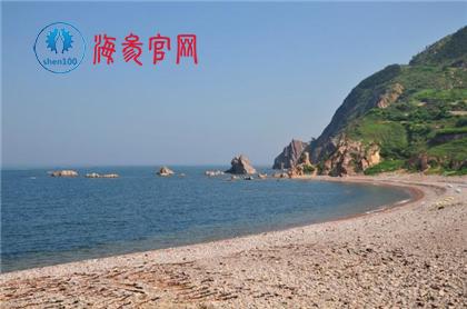 长岛野生海参捕捞节!看野生海参捕捞过程