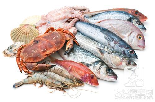 海参一天吃多少最好
