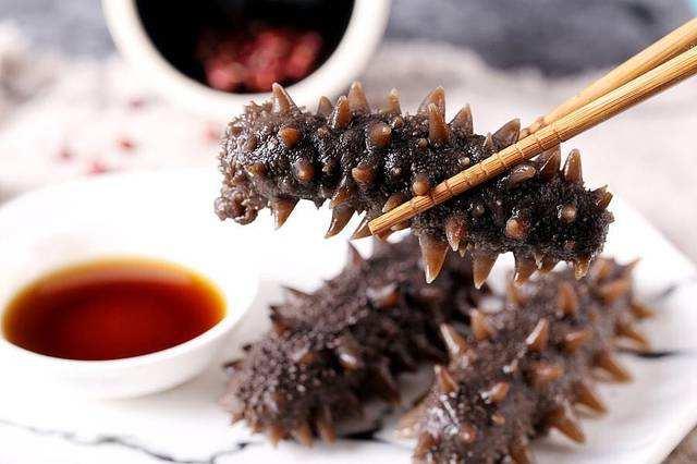 海参可以常吃吗