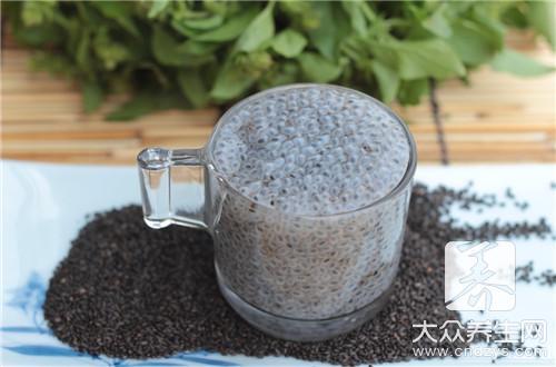 黑豆茸海参粉到底都有什么功效呢?