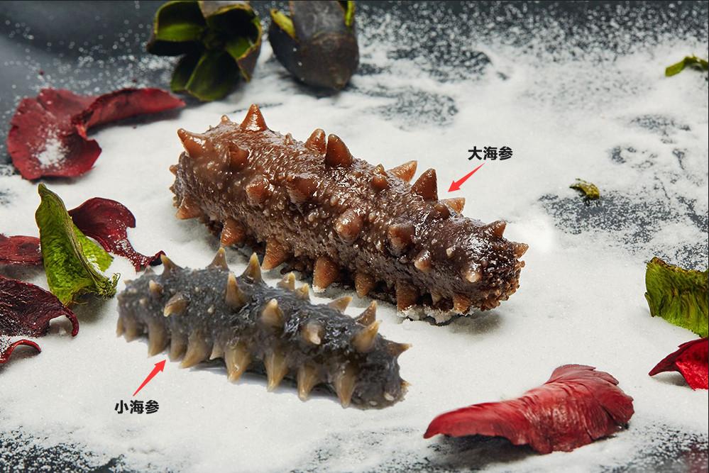 以30-50头为例,就是说每斤头数有30-50头,海参越少,单只海参的重量就a头数的莲子图片