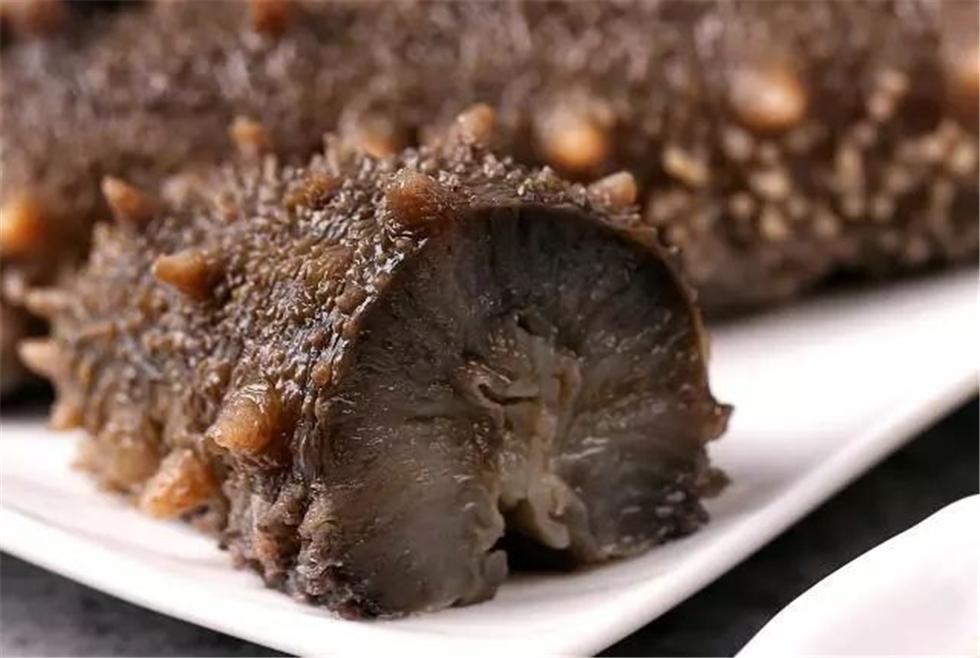 野生海参怎么吃最好